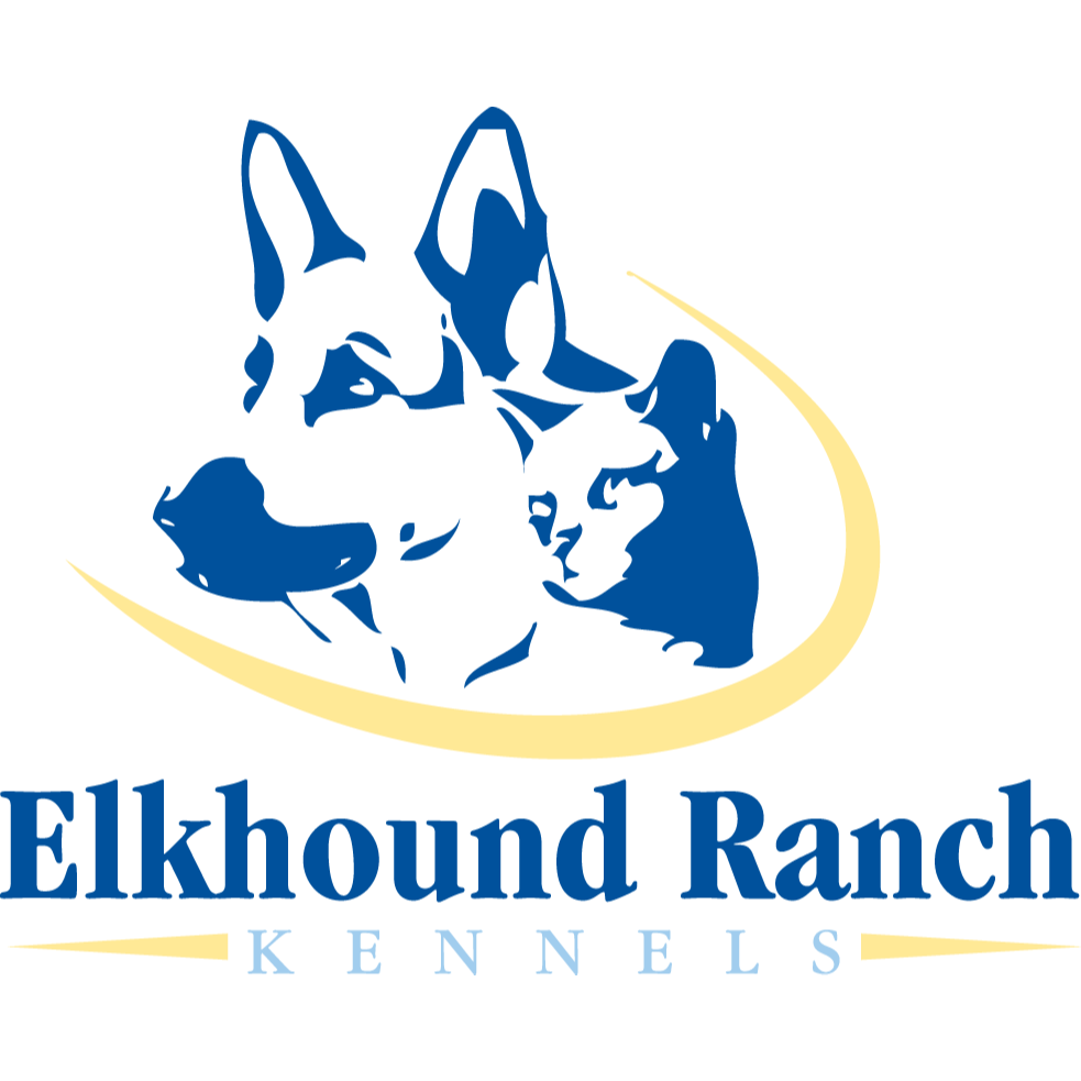 Looking for the best natural dog food brands near you? Our local pet market offers the best holistic dog & cat food brands in Kansas City, MO. Talk to our pet experts today!