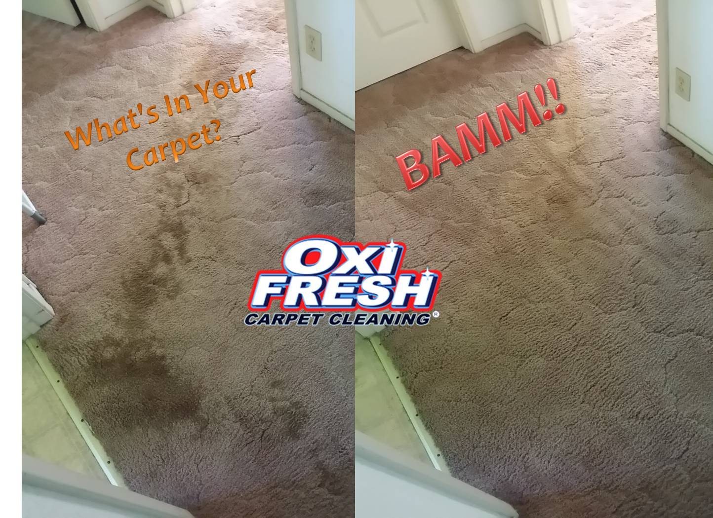Oxi Fresh of St Charles Carpet Cleaning in Saint Charles ...
