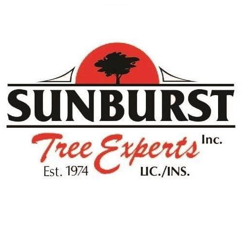 Sunburst Tree Experts