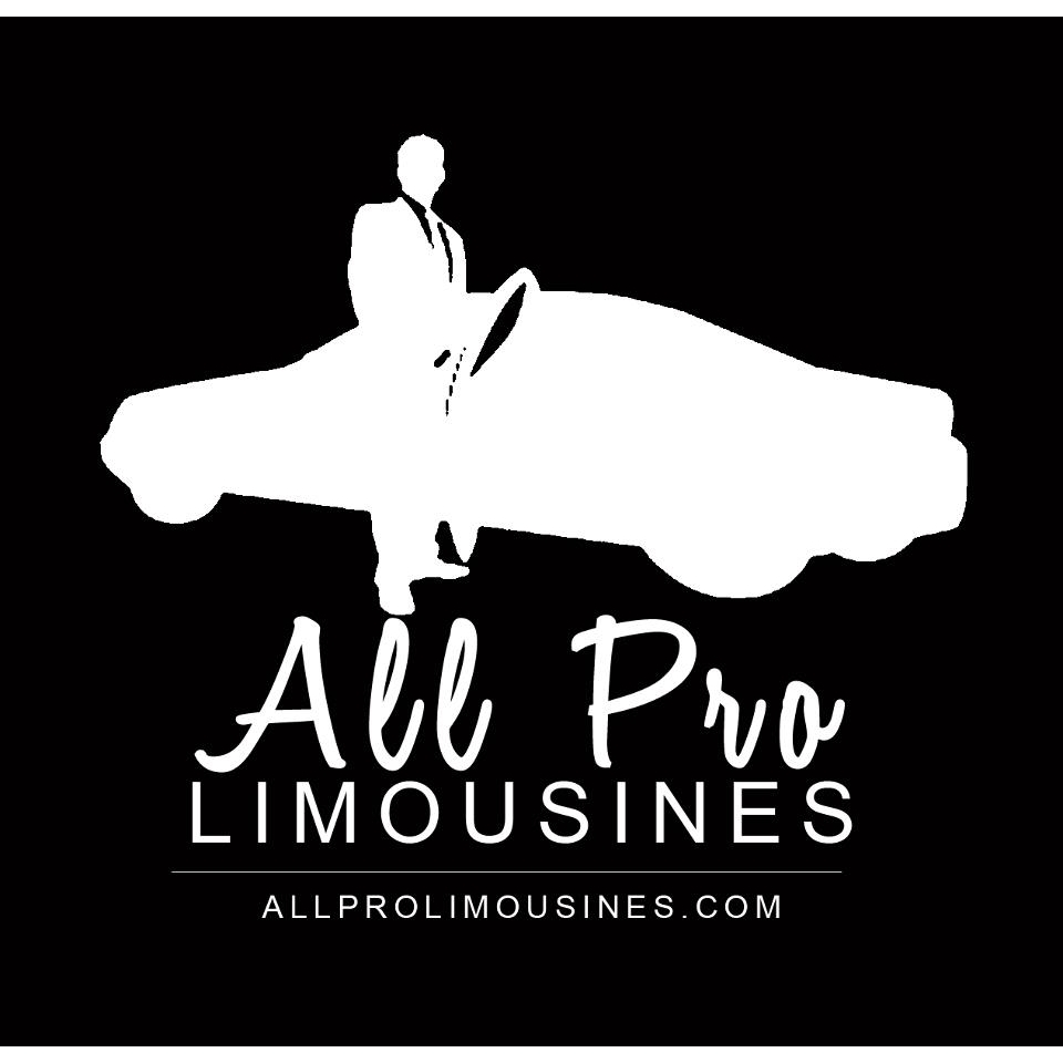 Allprolimousines - Largo, FL - Air Transportation
