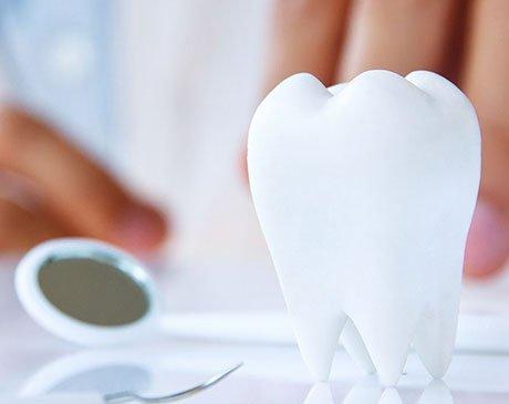 All Family Shoreline Dental - Shoreline, WA 98155 - (206)363-2300 | ShowMeLocal.com