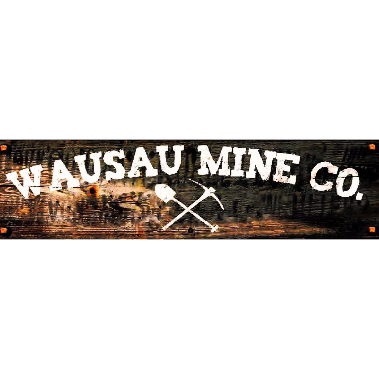P mining co incorporated