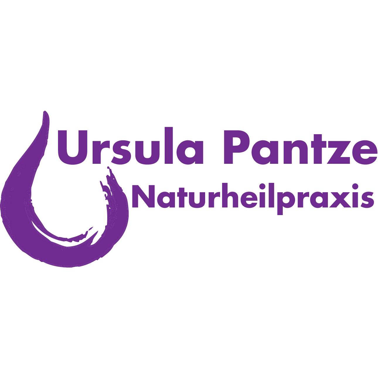 Bild zu Naturheilpraxis Ursula Pantze in Neumarkt in der Oberpfalz