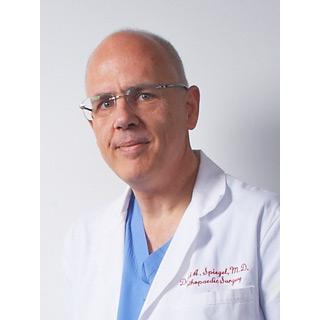 David A Spiegel MD