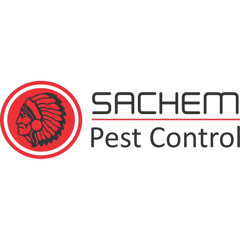 Sachem Pest Control