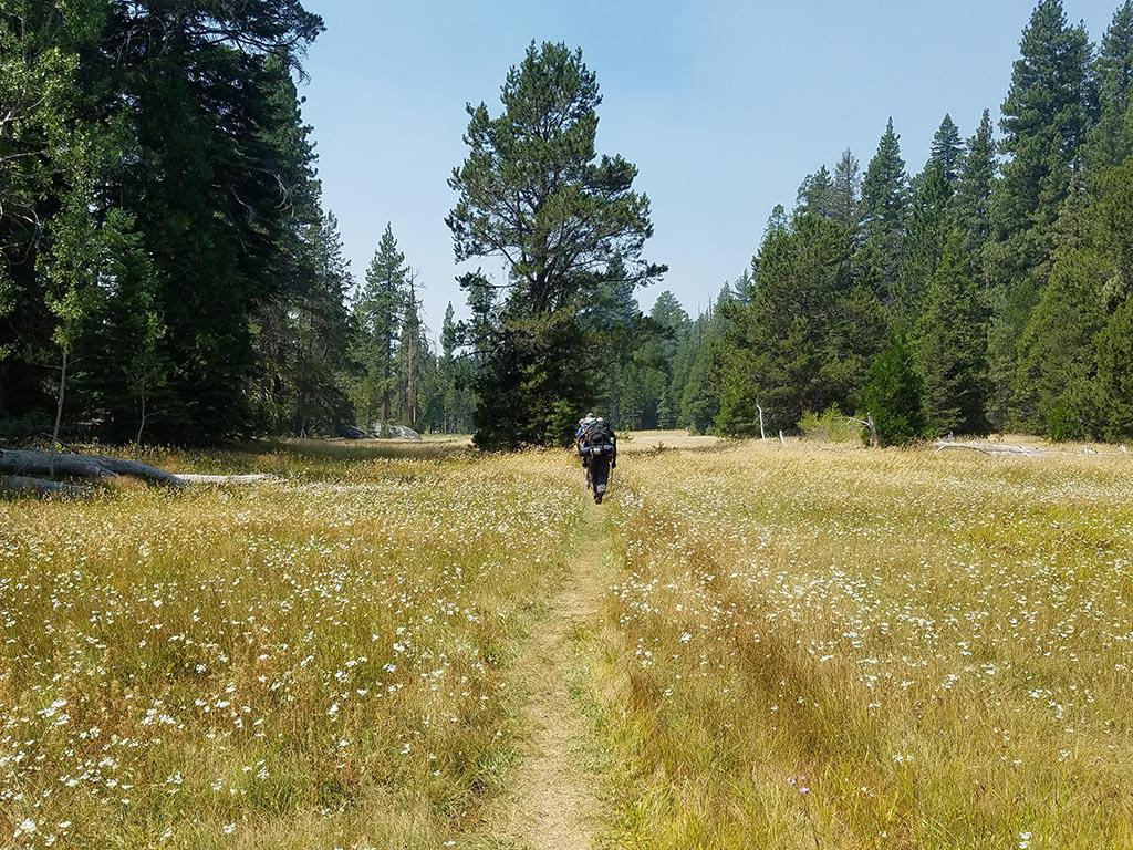 Women's Backpacking the Sierra