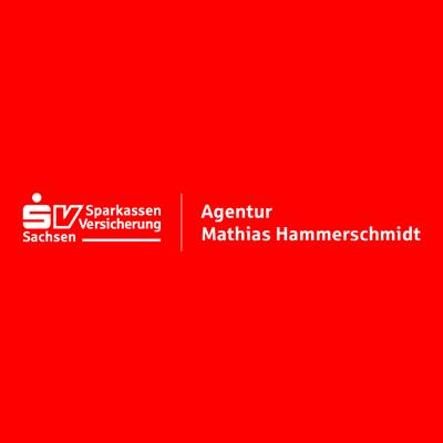 Bild zu Sparkassen-Versicherung Sachsen Agentur Mathias Hammerschmidt in Plauen