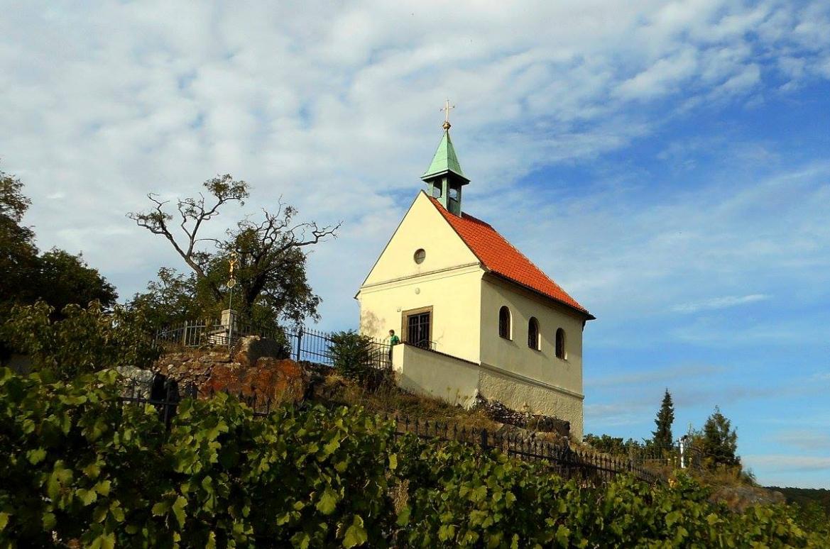 Vinice sv. Kláry