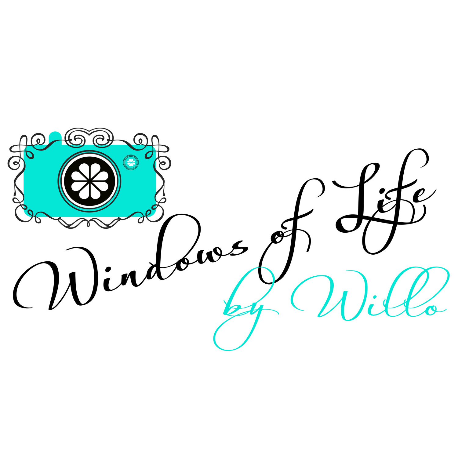 Windows of Life by Willo