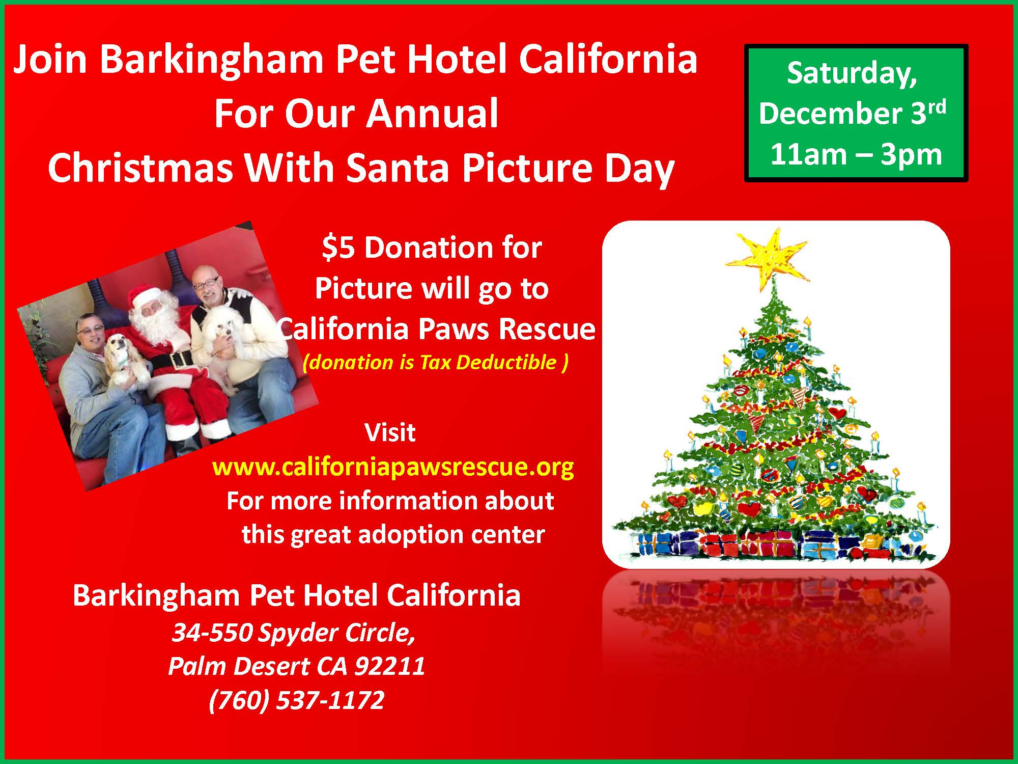 Barkingham pet hotel california coupons near me in palm for Pet hotels near me