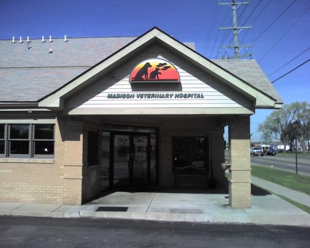 Madison Veterinary Hospital image 1