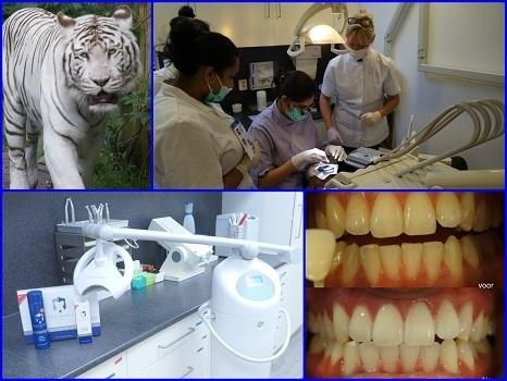 Tandartsenpraktijk Tandbewust