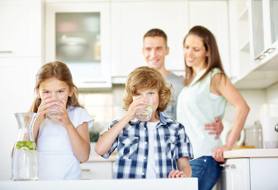 Pristine Water Softeners Goodyear