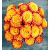 La Fleur Adoree