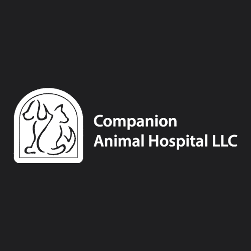Companion Animal Hospital LLC - Collierville, TN - Veterinarians