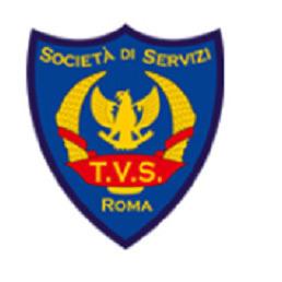 Tv Services Vigilanza