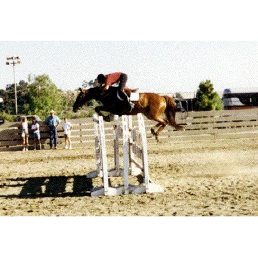 Van Doren Show Jumping and Hunters