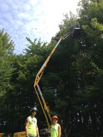 Images Ascend Tree Services