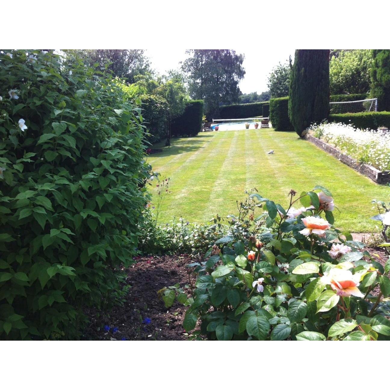A z garden landscape services chesham landscape for Local gardening services