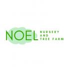 NOEL NURSERY AND TREE FARM
