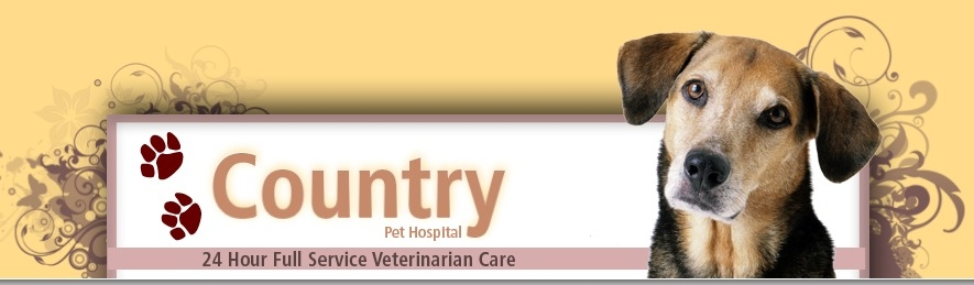 Vets in CA Alpine 91901 Country Pet Hospital 2525 Alpine Boulevard (619)320-1018