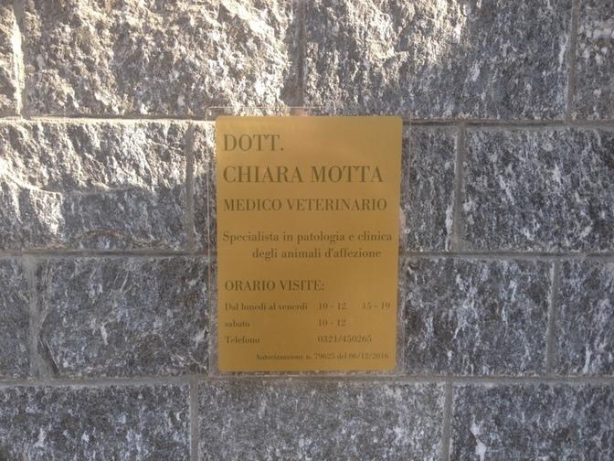 Ambulatorio Veterinario Motta Chiara