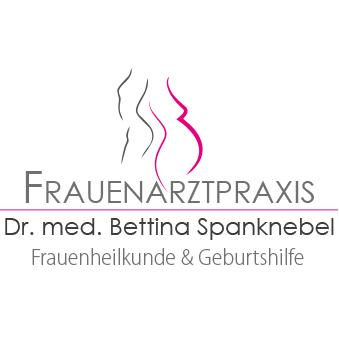 Bild zu Frauenarztpraxis Dr. Bettina Spanknebel in Schwalmstadt