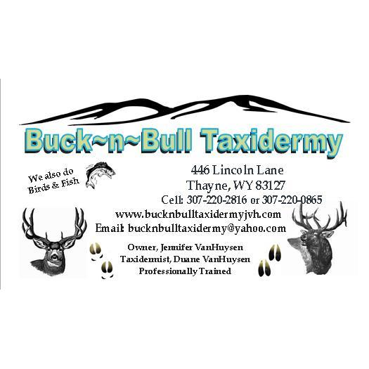 Buck~N~Bull Taxidermy