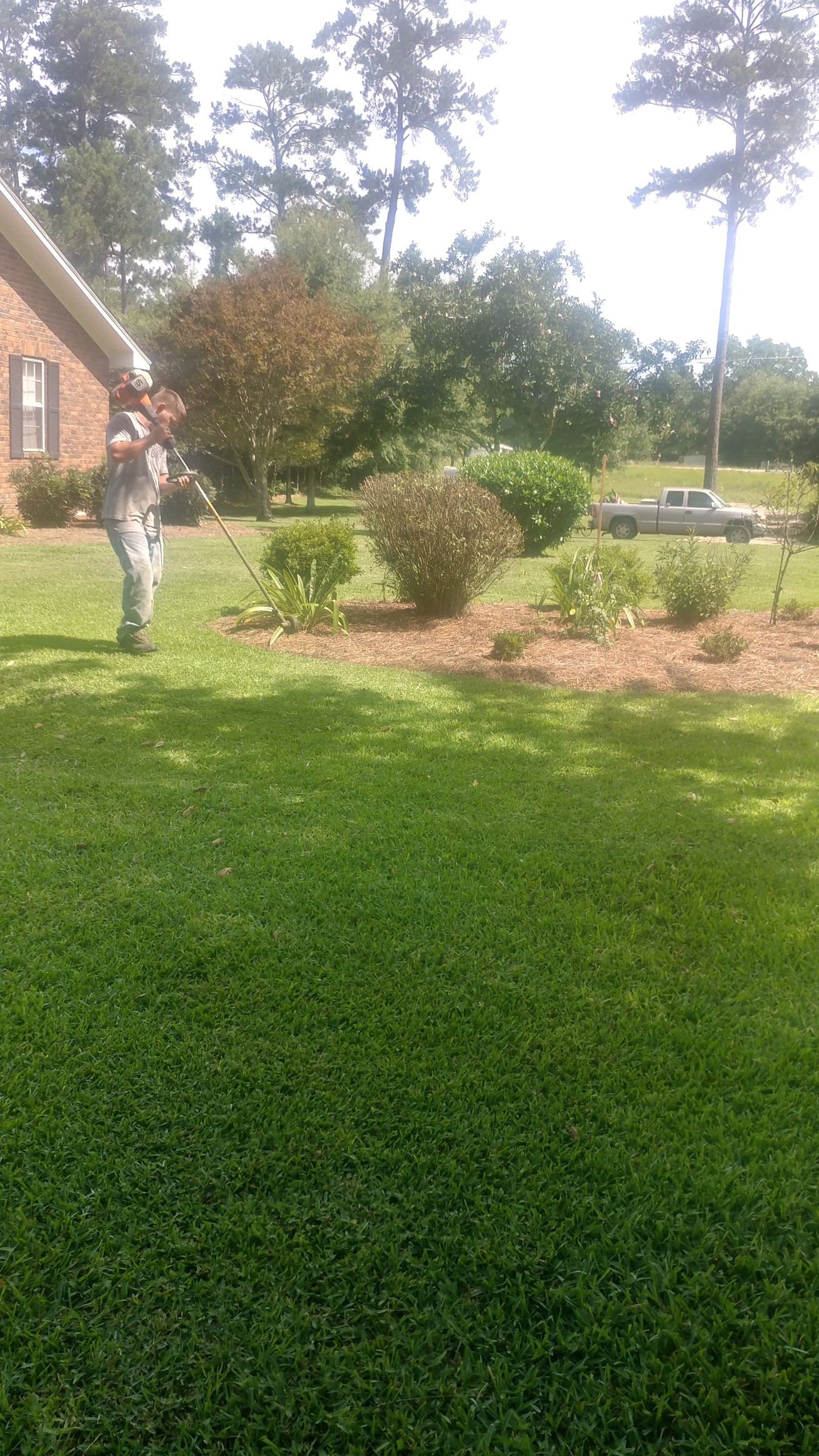 Quality cut lawn care sumrall mississippi for Local lawn care services