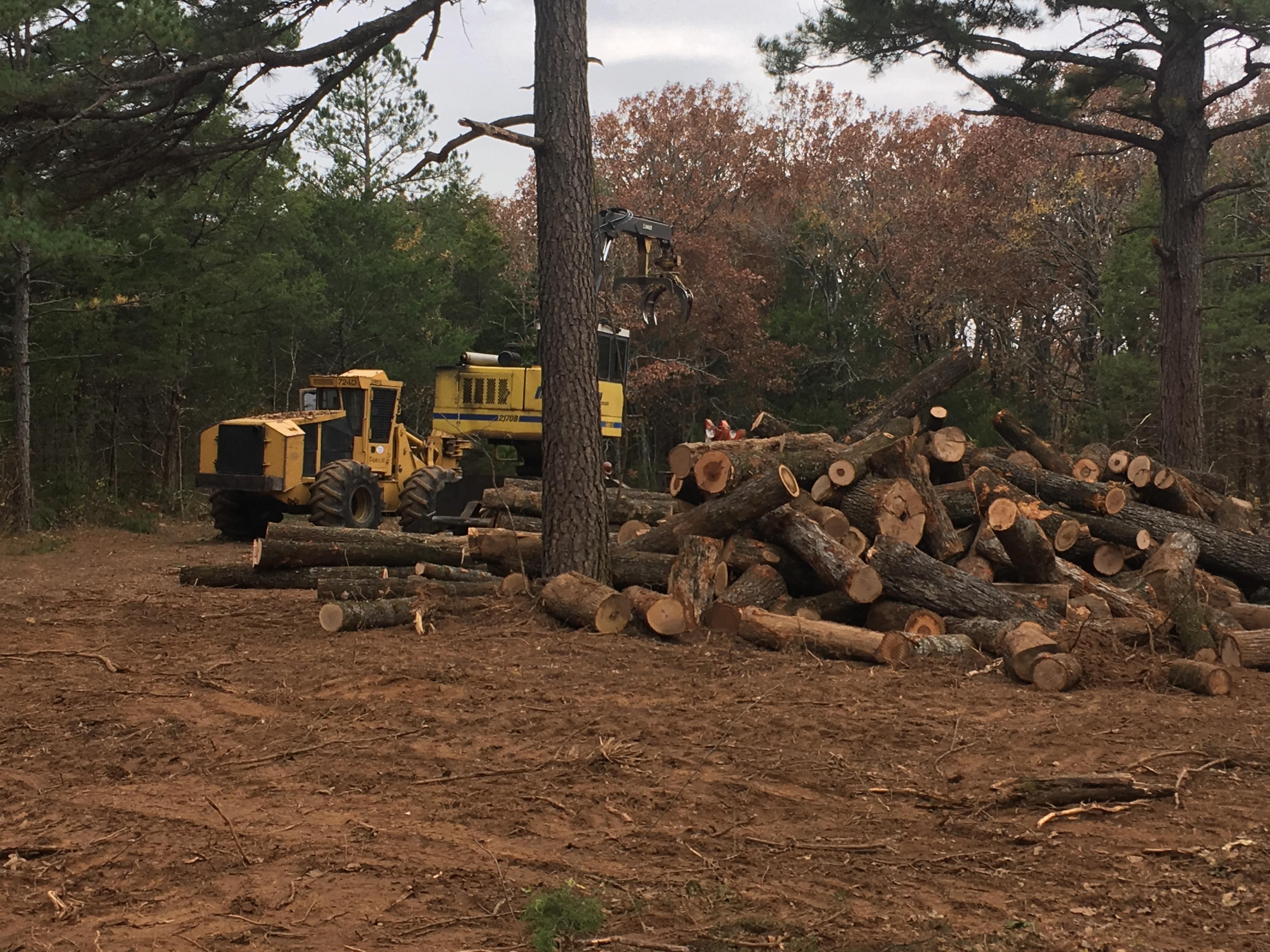 Long Valley Timber LLC