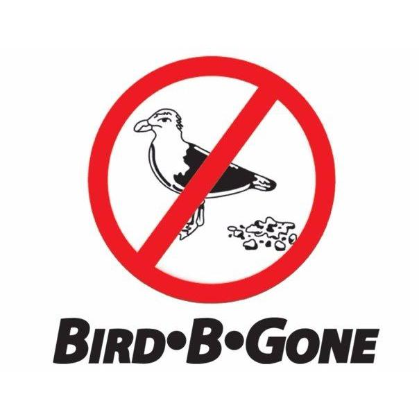 Bird B Gone