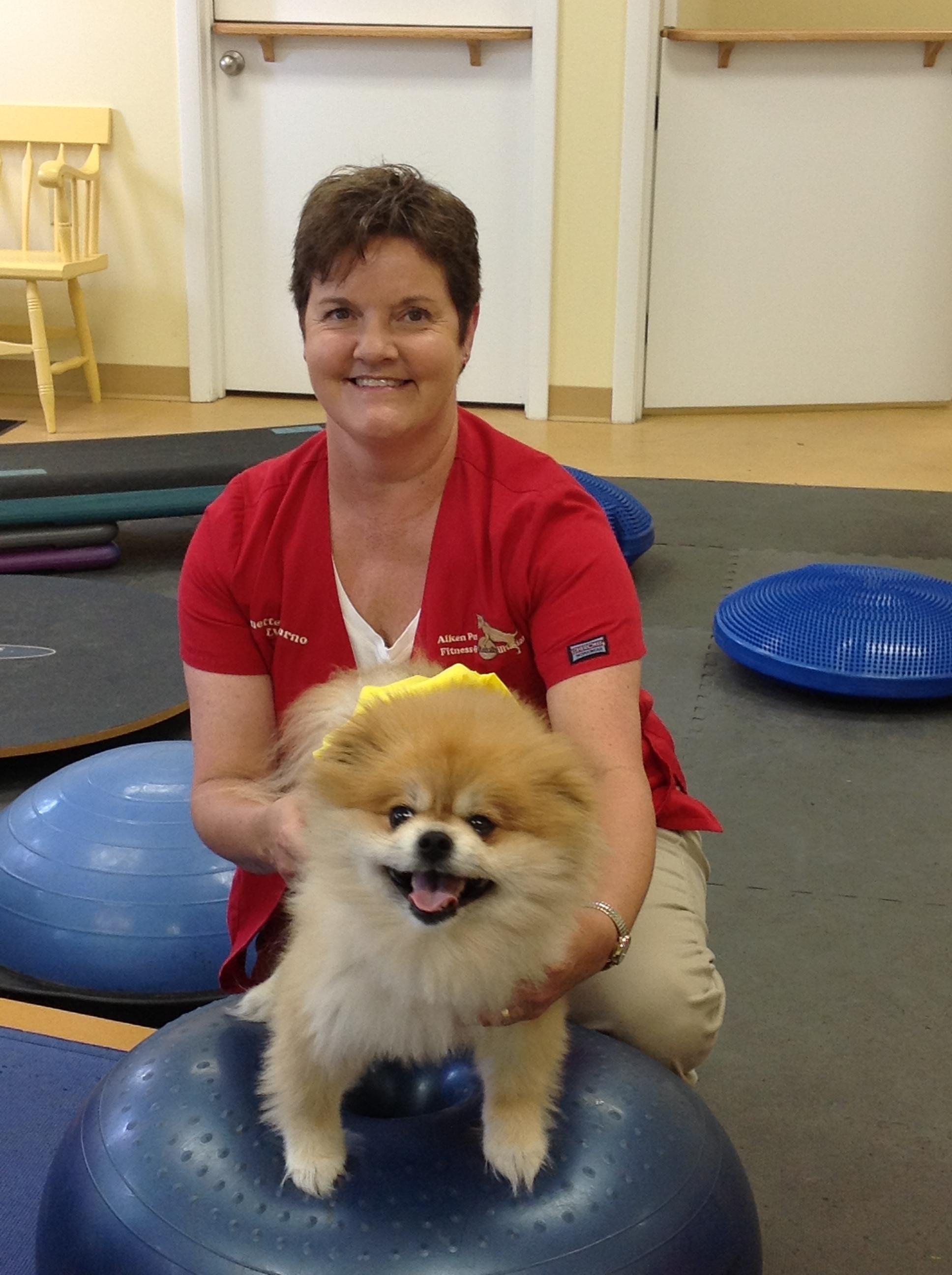Aiken Pet Fitness and Rehabilitation image 7