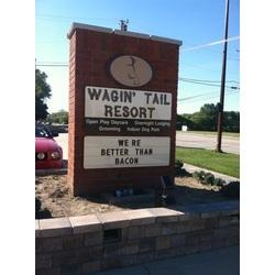 Wagin' Tail Resort & Indoor Dog Park