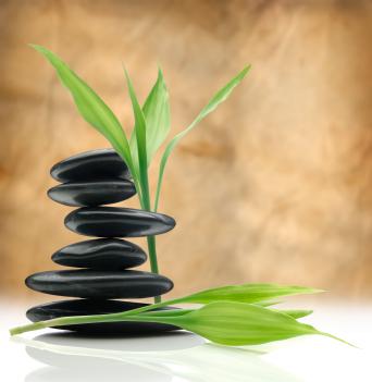 Metroplex Therapeutic Massage