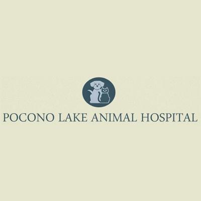 Pocono Lake Animal Hospital - Pocono Lake, PA - Veterinarians