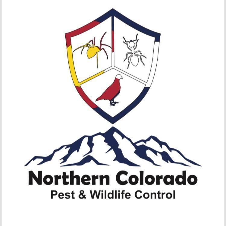 Northern Colorado Pest and Wildlife Control