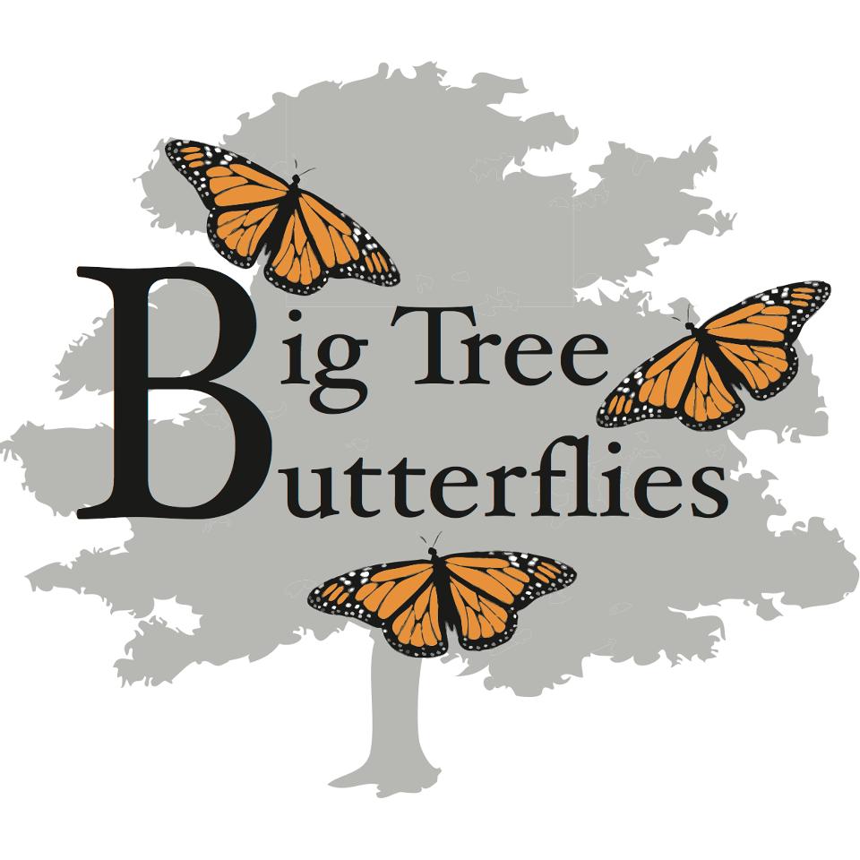Big Tree Butterflies