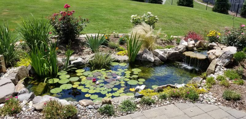 If you need help maintaining, installing, or repairing your water features, we are here for you.