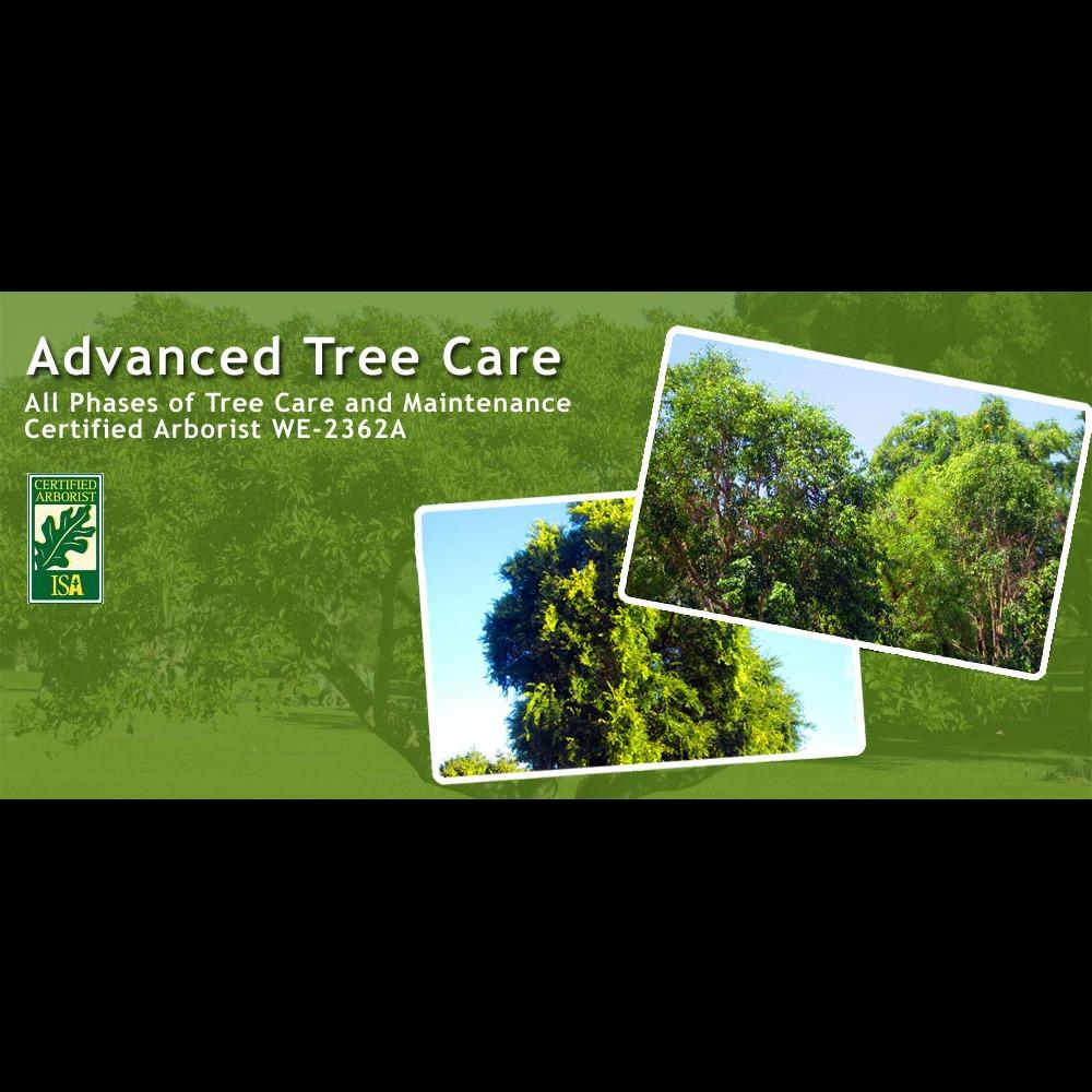 Advanced Tree Care - Chino, CA - Tree Services