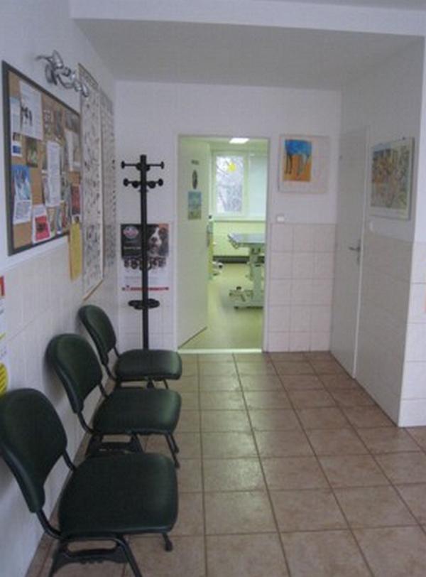 Veterinární lékař - Novotný Luděk MVDr.
