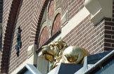 Dagverzorging De Gouden Leeuw Groep BV