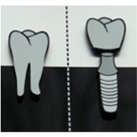 Bild zu Zahnarztpraxis Dr. Robert Berges in Cloppenburg