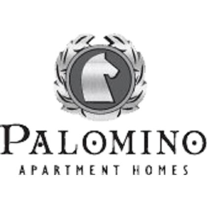 Palomino Apartments in San Antonio, TX