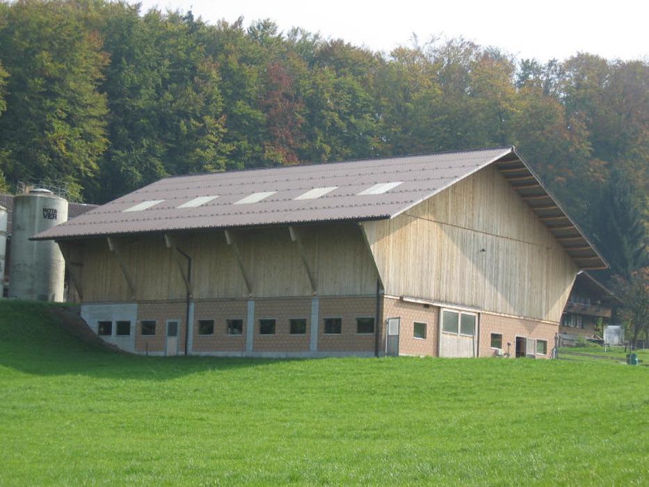 Zurbuchen Holzbau und Sägerei AG