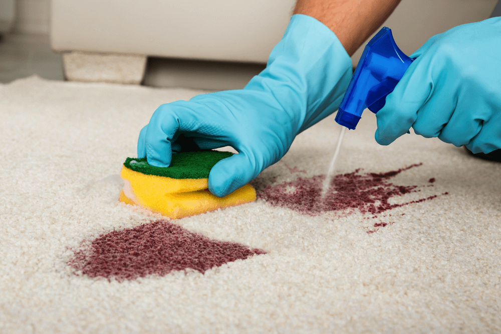 Rug Cleaning and Repair NY