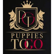 Puppies to Go 2