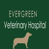 Evergreen Veterinary Hospital