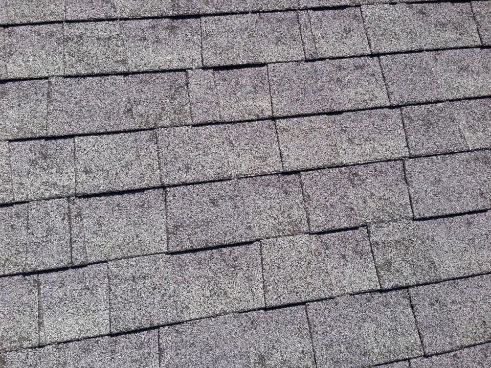 RoofCrafters-Savannah image 12