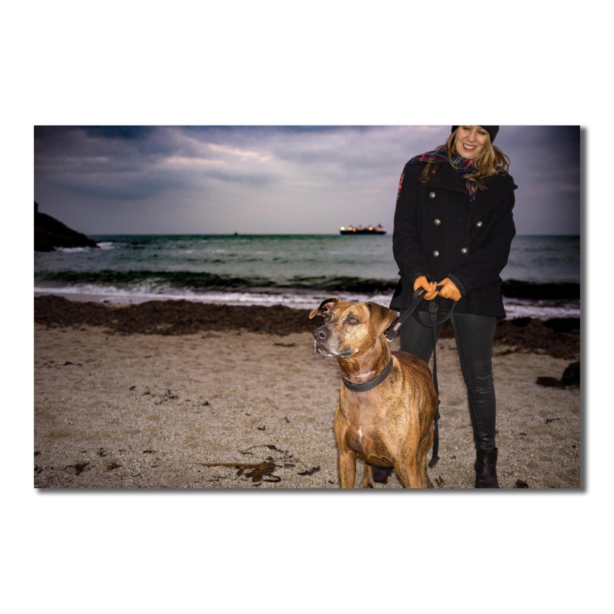 Walk that Dog - Falmouth, Cornwall  - 01326 314152 | ShowMeLocal.com