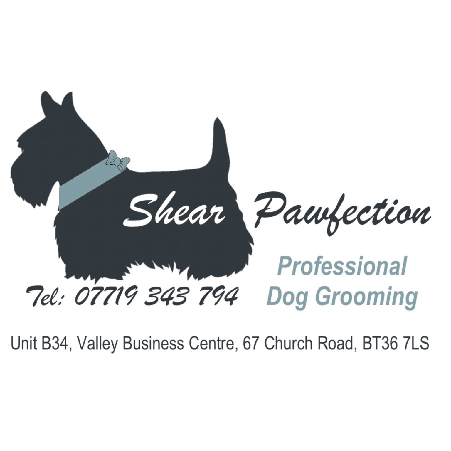 Shear Pawfection Professional Dog Grooming - Newtownabbey, County Antrim BT36 7LS - 07719 343794   ShowMeLocal.com